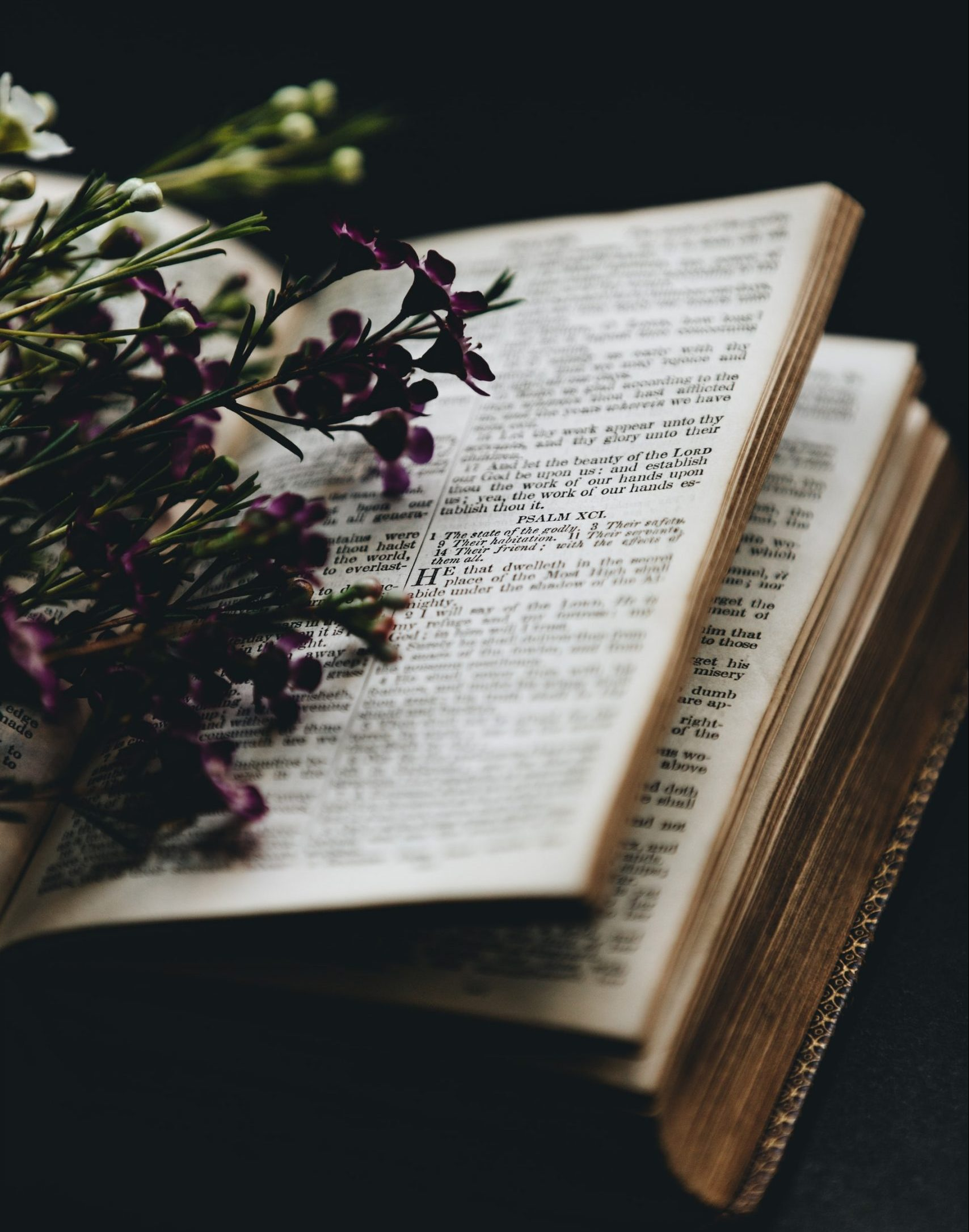 Readings and Gospel for this week