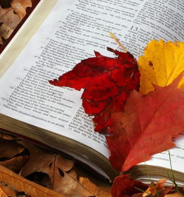 This week's Readings and Gospel